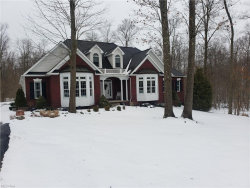 Photo of 11344 Rolling Meadows Dr, Hiram, OH 44231 (MLS # 4224155)