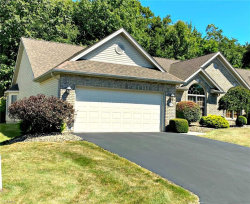 Photo of 7007 Clingan Rd, Unit 12, Poland, OH 44514 (MLS # 4224472)