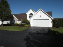 Photo of 601 East Western Reserve Rd, Unit 602, Poland, OH 44514 (MLS # 4224984)