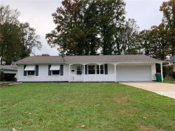 Photo of 6212 Cumberland Ct, Mentor, OH 44060 (MLS # 4232806)