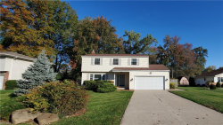 Photo of 7621 Ohio St, Mentor, OH 44060 (MLS # 4233580)