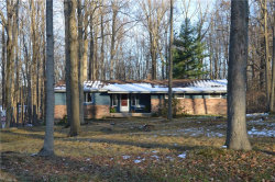Photo of 120 Leaview Ln, Chagrin Falls, OH 44022 (MLS # 4240605)