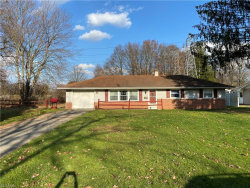 Photo of 4165 Mill Trace Rd, Youngstown, OH 44511 (MLS # 4241097)