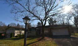 Photo of 755 Truesdale Rd, Youngstown, OH 44511 (MLS # 4241855)