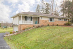 Photo of 9939 Abbey Rd, North Royalton, OH 44133 (MLS # 4242548)