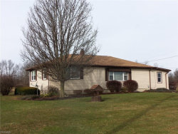Photo of 2907 State Route 534, Southington, OH 44470 (MLS # 4242715)