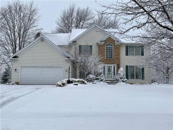 Photo of 783 Woodhaven Dr, Cuyahoga Falls, OH 44223 (MLS # 4242964)
