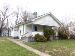 Photo of 2004 Pointview Ave, Youngstown, OH 44502 (MLS # 3982524)
