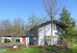 Photo of 491 Concord Downs Path, Aurora, OH 44202 (MLS # 4020306)