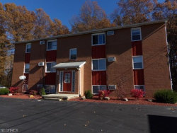 Photo of 166 Kendall Ave, Unit 3, Campbell, OH 44405 (MLS # 4046524)