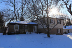 Photo of 101 Parkview Dr, Aurora, OH 44202 (MLS # 4065244)