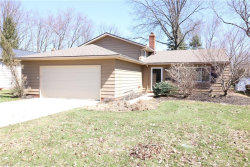Photo of 6623 Forest Glen Ave, Solon, OH 44139 (MLS # 4086627)
