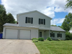 Photo of 4101 Siefer Dr, Rootstown, OH 44272 (MLS # 4095108)