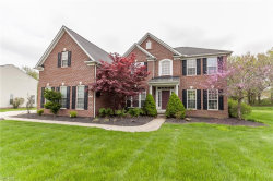 Photo of 1800 Parker Ln, Twinsburg, OH 44087 (MLS # 4105537)