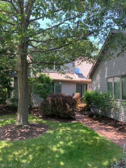 Photo of 638 Blue Spruce Trl, Chagrin Falls, OH 44023 (MLS # 4200762)