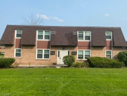 Photo of 2060 Wolosyn Cir, Unit 4, Youngstown, OH 44514 (MLS # 4224470)