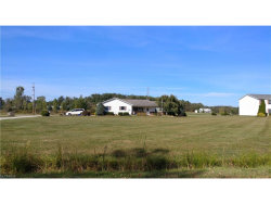 Photo of 5117 Streeter Rd, Shalersville, OH 44255 (MLS # 3945796)