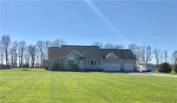 Photo of 9891 Asbury Rd, Mantua, OH 44255 (MLS # 4090729)