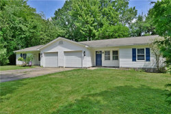 Photo of 670 Moyer Ave, Youngstown, OH 44512 (MLS # 4201059)