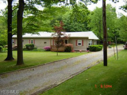Photo of 2101 Glacier Rd, New Springfield, OH 44443 (MLS # 1421946)