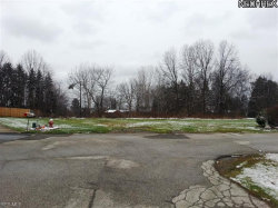 Photo of 2 Deer Trail Rear, Lot 2, Niles, OH 44446 (MLS # 3462619)