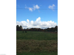 Photo of Stanley (3sw) Rd, Windham, OH 44288 (MLS # 3755429)