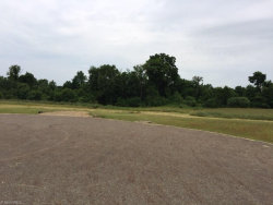 Photo of 8641 Heritage Ct, Lot 7, Shalersville, OH 44266 (MLS # 3818841)