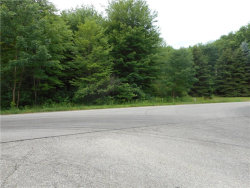 Photo of State Route 82, Lot 30, Hiram, OH 44234 (MLS # 3917238)