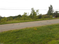 Photo of State Route 82 Hwy, Mantua, OH 44255 (MLS # 3917500)