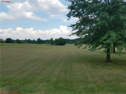 Photo of Alliance Rd, Lot 16, Rootstown, OH 44272 (MLS # 3928179)