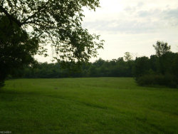 Photo of 10203 State Route 43, Streetsboro, OH 44241 (MLS # 3937832)