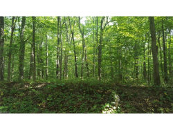 Photo of v-l South Mahoning Portage County Line Rd, Lake Milton, OH 44429 (MLS # 3940306)