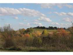 Photo of Lot #14 6994 Village Way Dr, Hiram, OH 44234 (MLS # 3946836)