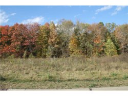 Photo of Lot #20 6979 Village Way Dr, Hiram, OH 44234 (MLS # 3946847)