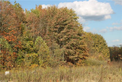 Photo of Lot #30 7053 Village Way Dr, Hiram, OH 44234 (MLS # 3946863)