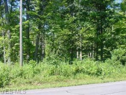 Photo of Lot 2 Main Market Rd, Lot 2, Garrettsville, OH 44231 (MLS # 3953270)