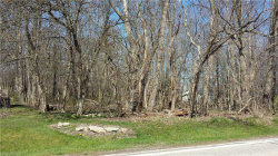 Photo of S/L 4 North Bissell Rd, Aurora, OH 44202 (MLS # 3953786)