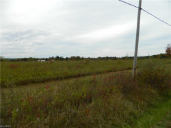 Photo of State Route 305 Vacant Land, Garrettsville, OH 44231 (MLS # 3955540)