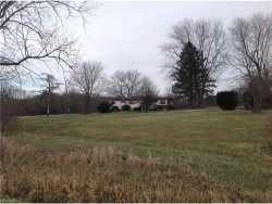Photo of 188 Beard Rd, East Palestine, OH 44443 (MLS # 3960995)