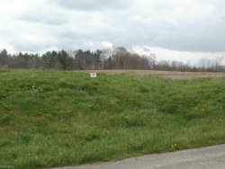 Photo of Wheeler Rd, Garrettsville, OH 44231 (MLS # 3967376)