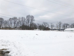 Photo of 2883 Cook Rd, Rootstown, OH 44272 (MLS # 3970785)