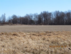 Photo of State Route 88, Windham, OH 44288 (MLS # 3972048)