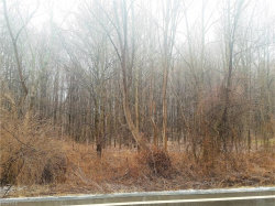 Photo of State Route 88 (lot 35se), Lot 35 SE, Garrettsville, OH 44231 (MLS # 3976680)