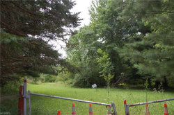 Photo of Valley View Rd, Macedonia, OH 44056 (MLS # 3980997)