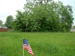 Photo of Lot 287 Green, Lot 287, Windham, OH 44288 (MLS # 4000753)