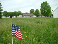 Photo of Lot 285 Green, Lot 285, Windham, OH 44288 (MLS # 4000762)