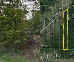 Photo of Griffith Rd, Ravenna, OH 44266 (MLS # 4007352)