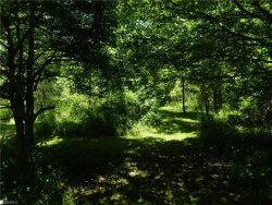 Photo of 7997 State Route 5, Lot 28W, Ravenna, OH 44266 (MLS # 4008700)