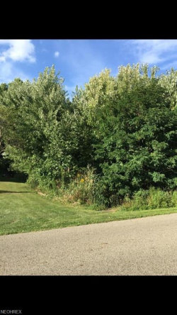 Photo of 90 Skyline, Canfield, OH 44406 (MLS # 4013881)