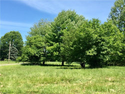 Photo of Pleasant Valley Ln, Canfield, OH 44406 (MLS # 4016640)